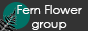 FernFlower Group — От чудес к знанию