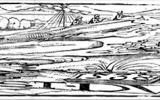 """Artista de nuremberg erhard schön ya en 1538, se creaba imágenes ocultas en sus grabados en madera.  En uno de ellos, el primero se puede observar bíblico jonás, china y partes de la escena, pero si se mira un poco la esquina de abajo a la izquierda, delante de los ojos, se abre una inesperada imagen de un campesino, справляющего natural de la necesidad. Más claramente rezuma y la frase """"WAS. SICHST. DV"""", es decir, """"¿Qué ves?"""". Traducido del servicio de «Yandex.Traductor»"""
