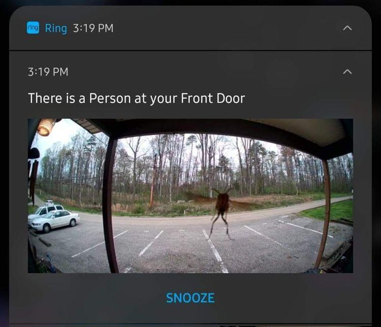 Сообщение от системы видеонаблюдения о том, что кто-то стоит перед дверью
