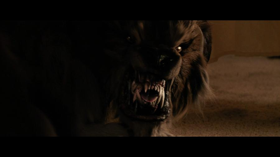 Собака-оборотень