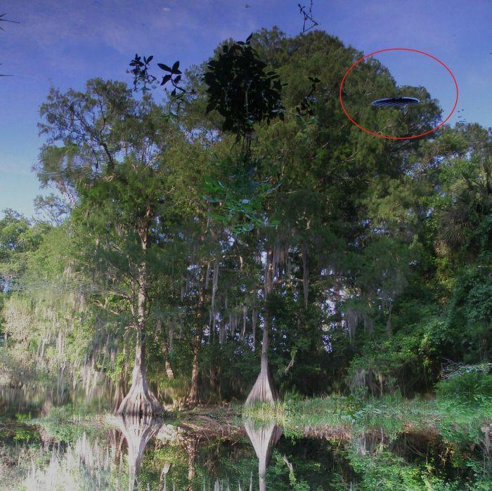 El reflejo de los bosques en el agua. En la superficie de la выстуавют virutas de madera y piedras. Traducido del servicio de «Yandex.Traductor»