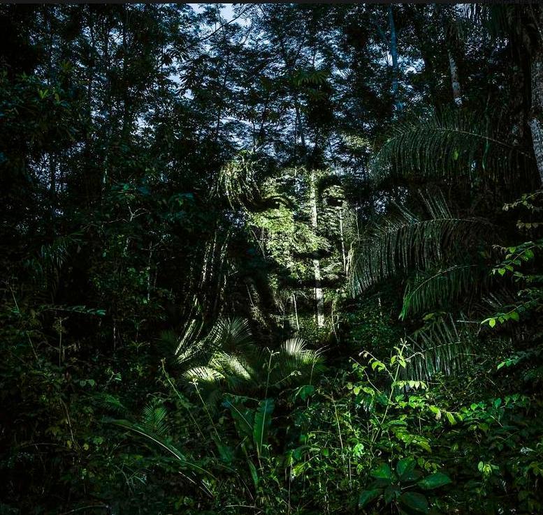 """ФотографФилиппЭшарзапустил уникальный экологический проект """"Стрит-арт 2.0"""". Площадкой для творчества для него стали джунгли на берегах Амазонки. Он использует световые и компьютерные технологии, проецируя изображения на деревья."""