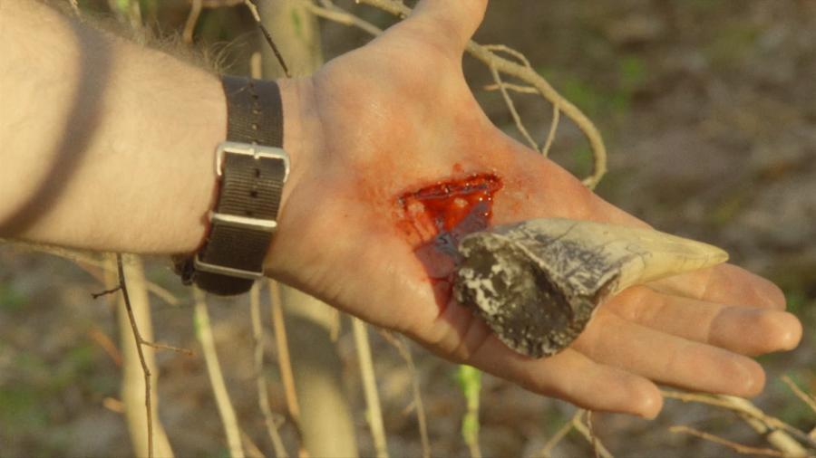 Древняя реликвия и рана, ставшая причиной появления способностей оборотня